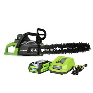 Greenworks 14-Inch 40V Cordless Chainsaw, 2.0 AH Battery Included