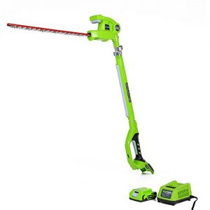 Greenworks 20-Inch 24V Cordless Pole Hedge Trimmer
