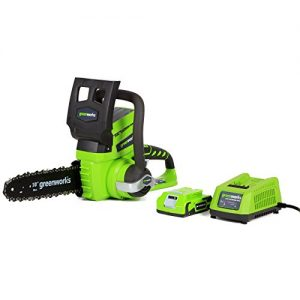 Greenworks 10-Inch 24V Cordless Chainsaw, 2.0 AH Battery Included