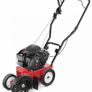 Troy-Bilt 140cc Briggs and Stratton OHV 550e series Engine