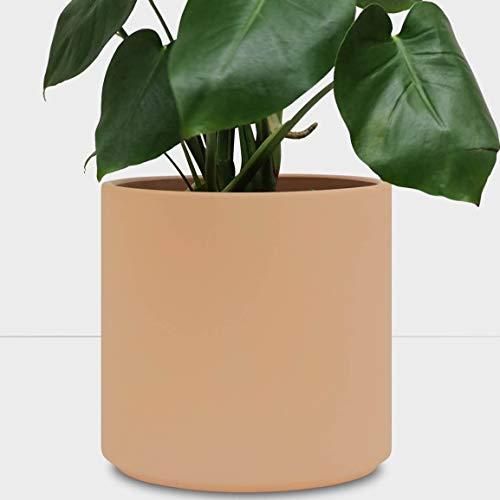PEACH & PEBBLE Indoor Plant Pot - Blush Terracotta Planter