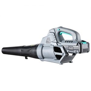 PRYMAX Leaf Blower Cordless 40V 2.5AH Lithium Battery-Powered