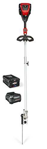 lectric Cordless Pole Saw Kit with 2.0 Battery & Rapid Charger