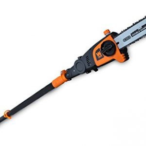 WEN 40V Max Lithium Ion 10-Inch Cordless and Brushless Pole Saw