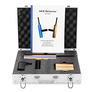 Long Search Range AKS 3D Gold Detector