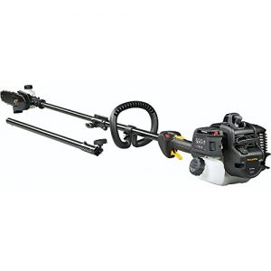 Poulan Pro, 28cc 2-Cycle Gas 8 in. Pole Saw