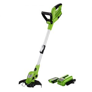 Best Partner 10-Inch 18V Cordless String Trimmer/Edger