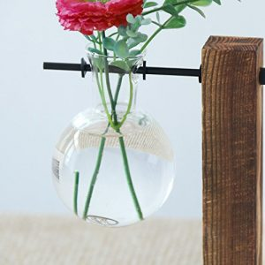 Ivolador Bulb Vase (Name:Flame) in Display Wooden Stand Flower Pots