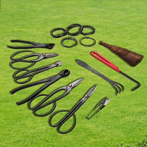 LAZYMOON Set of 10 Carbon Steel Bonsai Scissors Garden Hand Pruning Branch