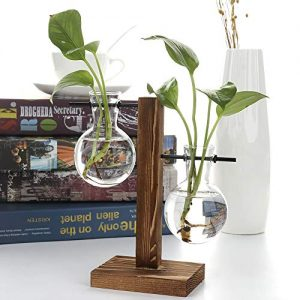 Alapaste Clear Glass Planter Bulb Vase with Retro Wooden Stand