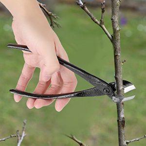 ViaGasaFamido Garden Branch Cutter Beginner 205mm Professional Zinc