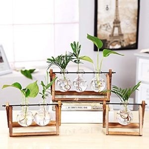 KYMAKE Clear Glass Planter Bulb Vase with Vintage Wooden Stand