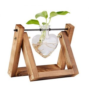 Plant Terrarium With Wooden Stand, Modern Air Planter Heart Glass Planter Bulb
