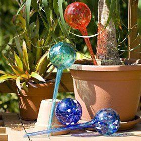 5 Star Super Deals Aqua Plant Watering Globes Large - 4pc Deluxe Set