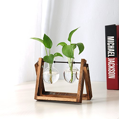 Clear Glass Planter Bulb Vases with Rustic Wood & Metal Swivel Holder Stand