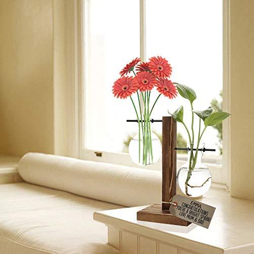 Glass Planter Bulb Vase, Desktop Plant Terrarium with Retro Solid Wooden Stand