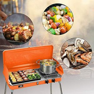 KOOLWOOM Portable Liquid Propane Grill,2 Burner Grill/Stove Barbecue Grill