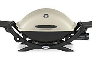 Weber Q2200 Liquid Propane Grill