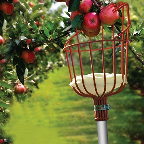 Ohuhu Fruit Picker Tool, 13-Foot Fruit Picker with Light-Weight