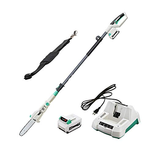 LiTHELi 40V 10 inches Cordless Pole Saw