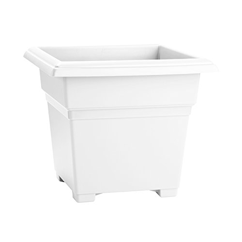 Novelty Countryside Square Tub Planter, White