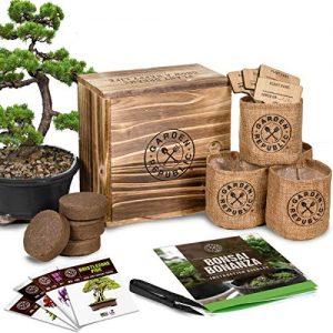 Bonsai Tree Seed Starter Kit - Mini Bonsai Plant Growing Kit