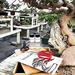 bonsai-tree-starter-tool-kit-in-bamboo-box-by-tinyroots-anti-intimidation-starter-kit-includes-101-bonsai-tips-book-butterfly-shears-micrototal-micronutrient-supplement-fertilizer-aluminum-wire