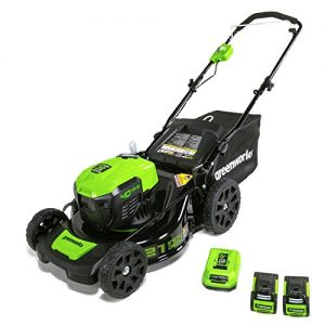 "GreenWorks Electric Lawn Mower, 40V 21"" Batteries Included"