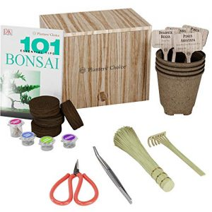 Premium Bonsai Starter Kit + 101 Essential Tips Book and Complete Toolkit