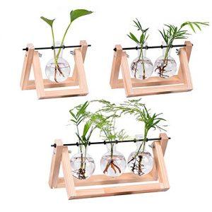 WITUSE Plant Terrarium Stand Glass Planter Flower Bulb Vases Metal