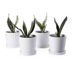 Greenaholics Plant Pots - 5.1 Inch Cylinder Ceramic Planters