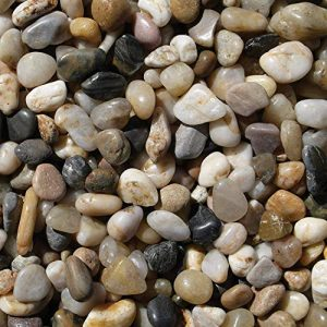 Exotic Pebbles Polished Gravel, Mixed, 5 Pounds