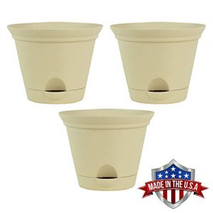 3 Pack 11.5 Inch Latte Quartz Plastic Self Watering Flare Flower