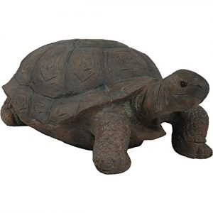 Sunnydaze Todd The Tortoise Garden Statue, Large Indoor/Outdoor