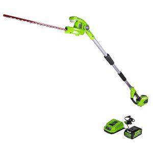 Greenworks 22-Inch 40V Cordless Pole Hedge Trimmer