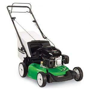 Lawn-Boy 21-Inch 6.5 Gross Torque Kohler, 3-in-1 Discharge Rear Wheel