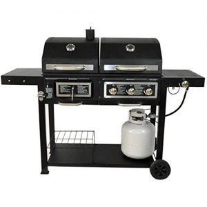 Dual Fuel Combination Charcoal/Gas Grill Recommended ...