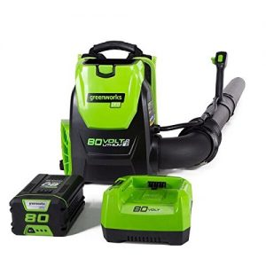 Greenworks 80V Cordless Backpack Leaf Blower