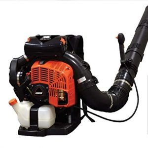 Echo Backpack Blower with Tube Throttle