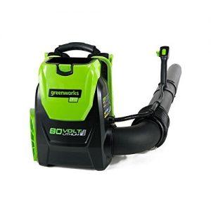 Greenworks 80V Cordless Backpack Leaf Blower, Battery and Charger