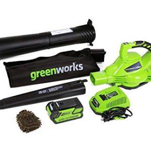 Greenworks Cordless Leaf Blower Vacuum, Digipro