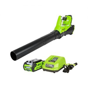 Greenworks 40V Electric Leaf Blower, 2.0Ah Battery and Charger Included