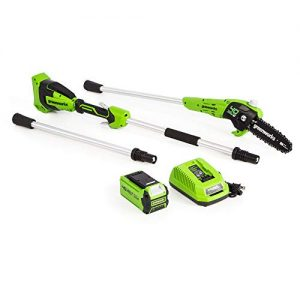 Greenworks 8-Inch 40V Cordless Pole Saw, 2Ah Battery