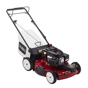 22 in. Kohler Low Wheel Variable Speed Self-Propelled Gas Lawn Mower
