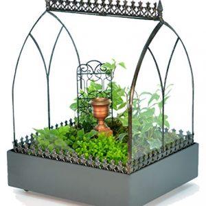 H Potter Glass Terrarium Wardian Case Succulent Planter Container for Plants