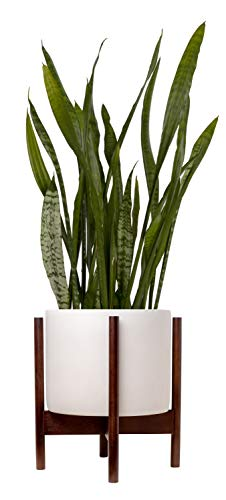 """Indoor Planter Large 9"""" Pot for Plants with Mid Century Modern Wooden Stand"""