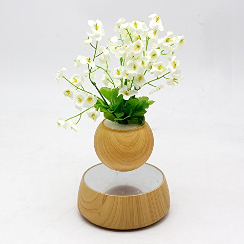 Levitation Wooden Bonsai Pot for Home and Office Decorations-Creative Prsent