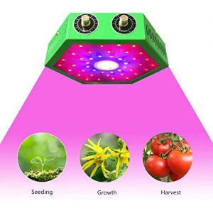 1000W COB LED Grow Light- Adjustable Full Spectrum for Hydroponics & Herb