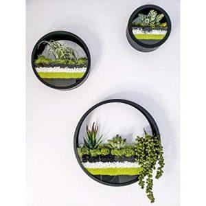 Set of 3 Round Hanging Wall Vase Succulent Planter Vase- Metal Flower Pots
