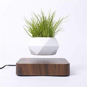 Levitating Air Bonsai Pot Rotation Flower Pot Planters Magnetic Levitation